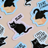 3 cat magnets! special price!
