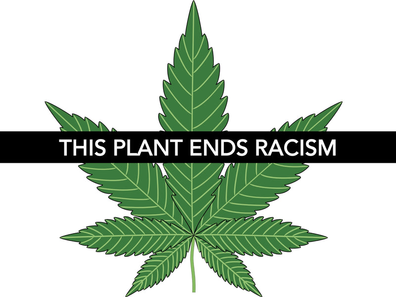 THIS PLANT ENDS RACISM: Why the CBD & Cannabis Industries are Catalysts for Positive Social Change through Racial Justice