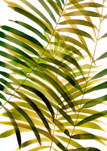 Golden Palm - Art Print