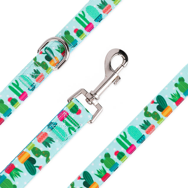 Blue Cactus Succulents Pet Leash