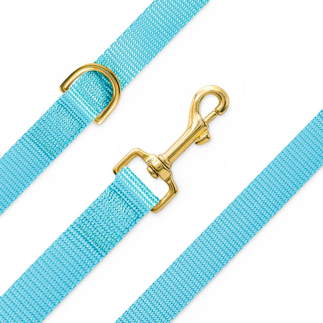 Classic Ocean Blue Nylon Leash