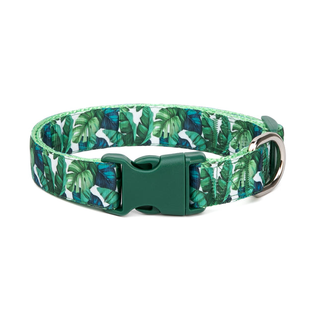Tropical Forest Collar