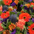 Purple & Orange Reflection Wreath. Diameter: 31cm. Send fresh flowers with Flowers.IE. Same day flower delivery available.