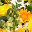 Yellow & White Posy Pad. Yellow roses, gerberas with lemon spray chrysanthemums, antirrhinums and white carnations. Get fresh flowers from Flowers.IE. Same day flower delivery available.