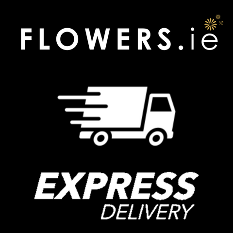 Express 3 Hour Delivery Extra €9.95