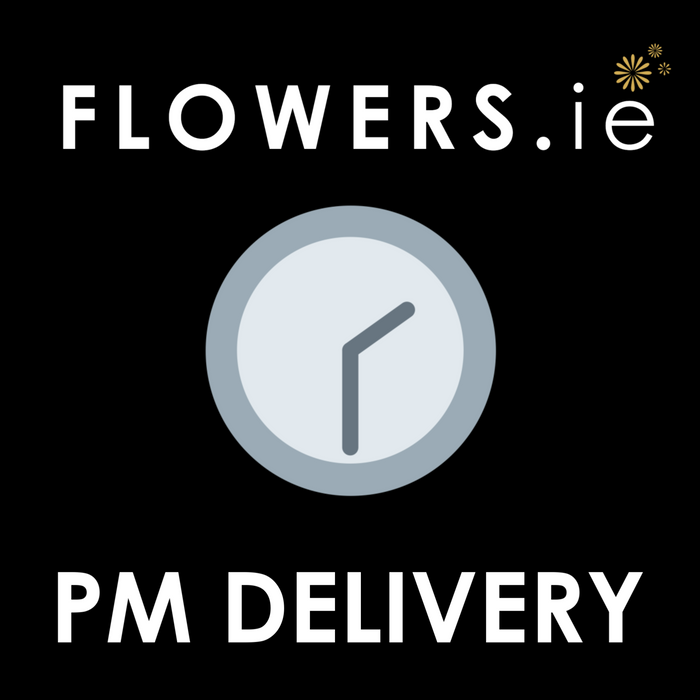 PM Delivery - (2pm - 6pm) Extra €4.95
