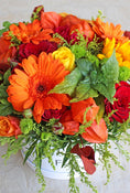 Autumnal Hatbox - FREE upgrade to Large features Red spray roses with large headed Orange Gerbera, oak leaves, solidago, and some Autumnal leaves. White Packaging. Have fresh flowers sent to you by Flowers.IE. Same day flower delivery available.