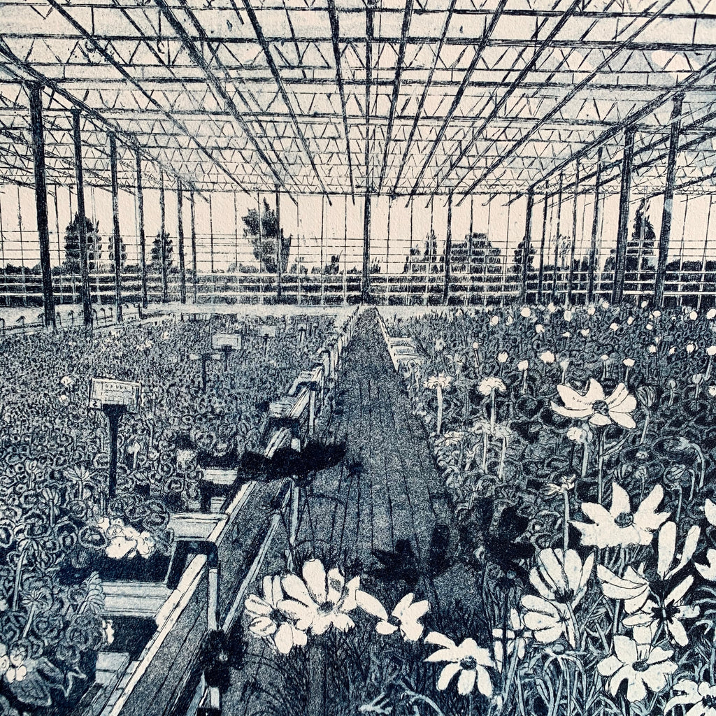 Etching 'Cosmos in the Greenhouse'