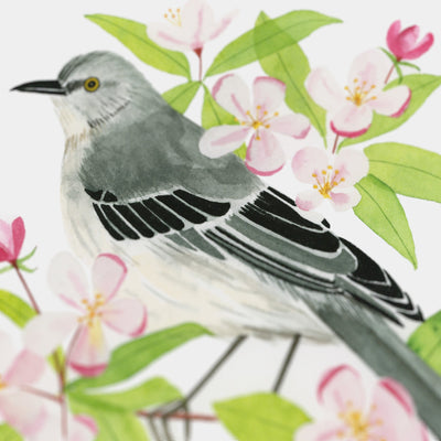 Arkansas Northern Mockingbird Print