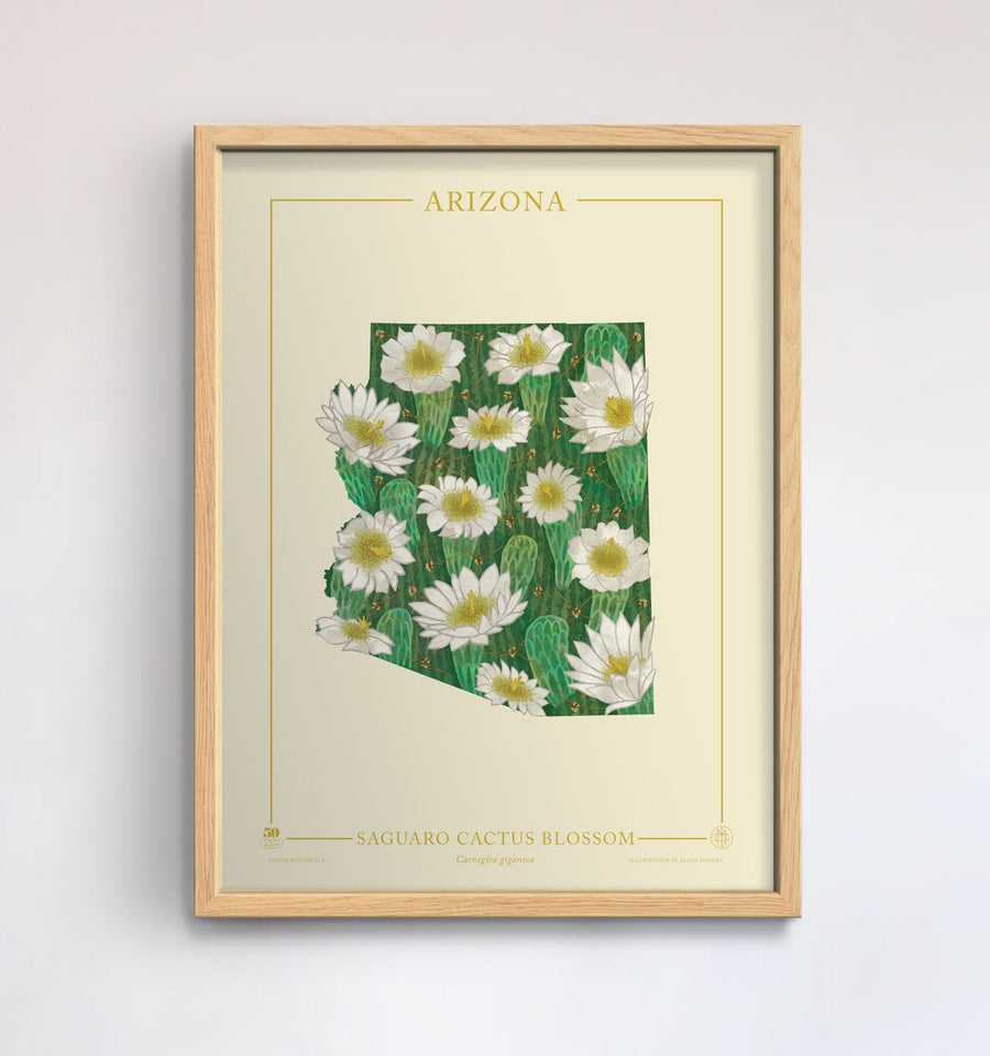 Arizona Native Botanicals Print