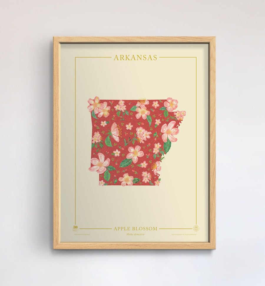 Arkansas Native Botanicals Print