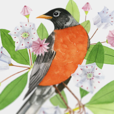 Connecticut American Robin Print