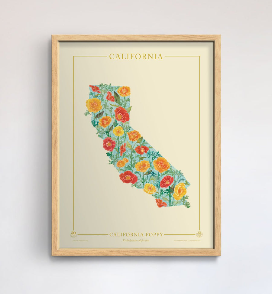 California Native Botanicals Print