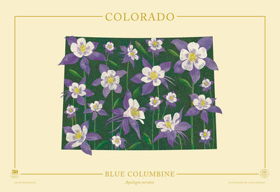 Colorado Native Botanicals Print