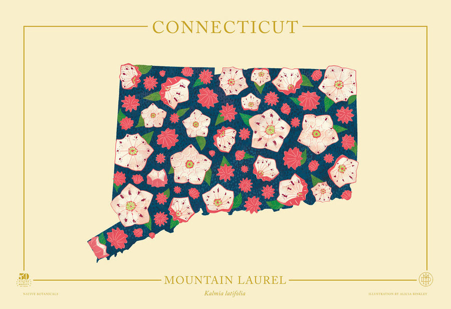 Connecticut Native Botanicals Print