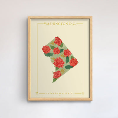 Washington D.C. Native Botanicals Print