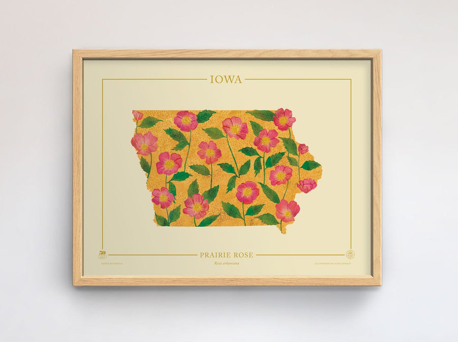 Iowa Native Botanicals Print
