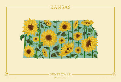Kansas Native Botanicals Print