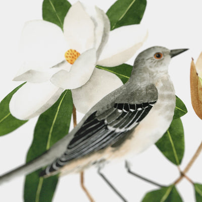 Mississippi Northern Mockingbird Print