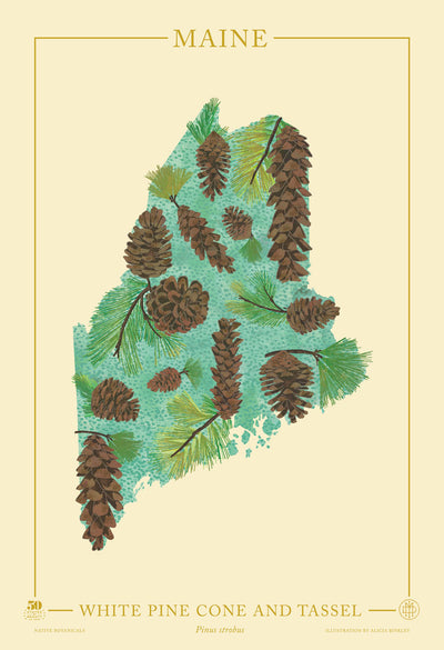 Maine Native Botanicals Print