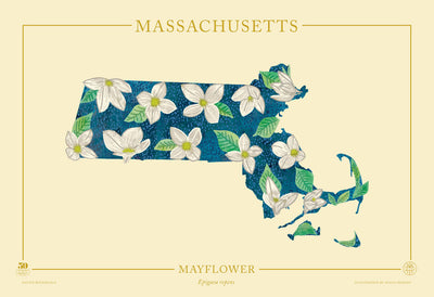 Massachusetts Native Botanicals Print