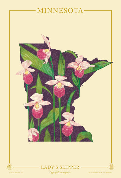 Minnesota Native Botanicals Print