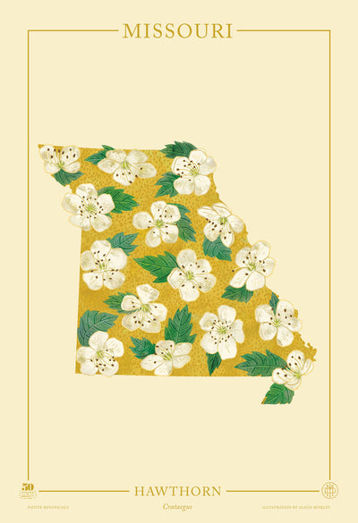 Missouri Native Botanicals Print
