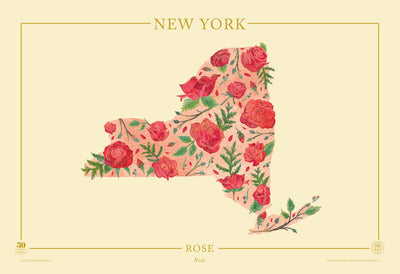 New York Native Botanicals Print