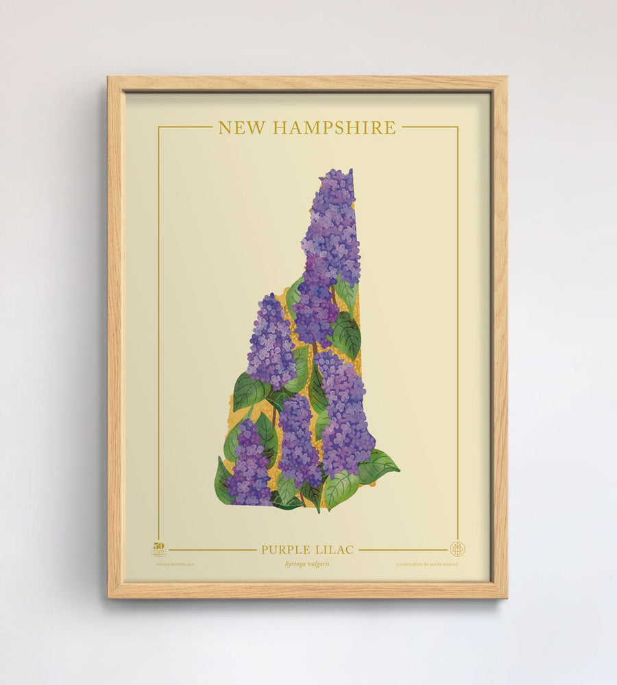 New Hampshire Native Botanicals Print