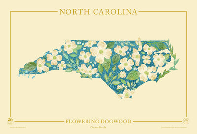 North Carolina Native Botanicals Print