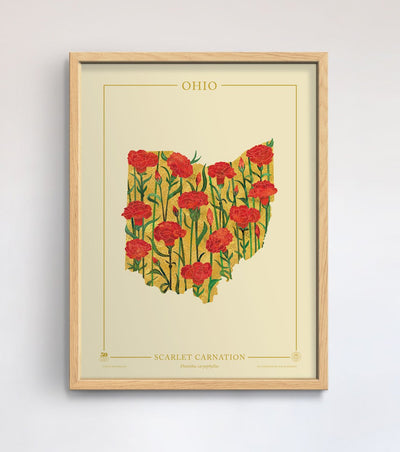 Ohio Native Botanicals Print