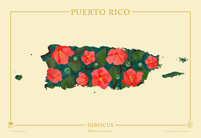 Puerto Rico Native Botanicals Print