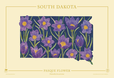 South Dakota Native Botanicals Print