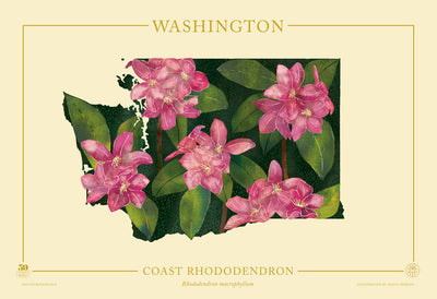 Washington Native Botanicals Print
