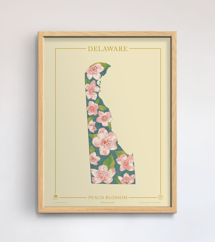 Delaware Native Botanicals Print