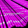 CE/RoHS 549mm 849mm 1149mm 1449mm led grow lights