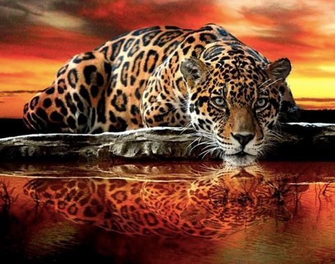 A diamond painting of a tiger.