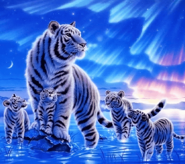 Aurora Winter Tiger Family
