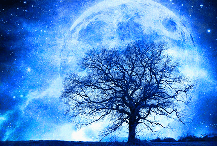 Full Moon Winter Tree