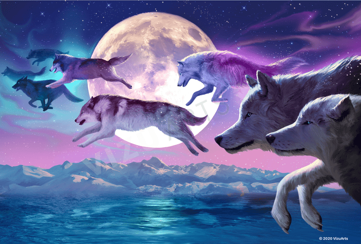Moonlight Wolf Chase
