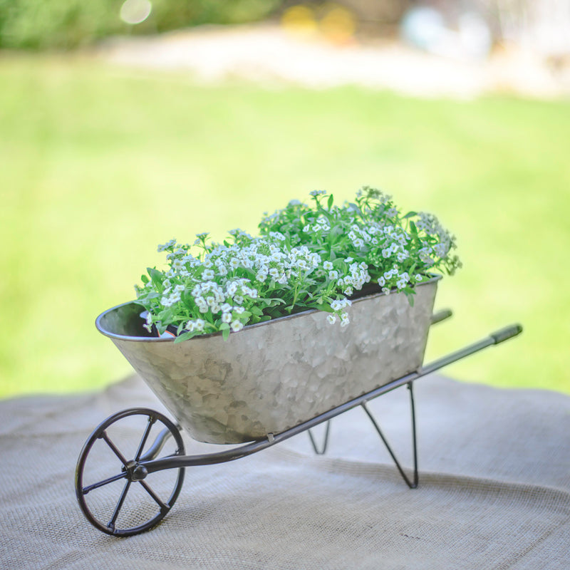 Metal Tabletop Wheelbarrow Planter