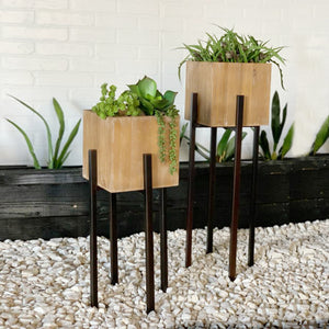Box Planter Set on Tall Stands