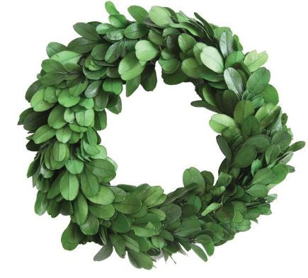 Preserved Boxwood Wreath - 6in