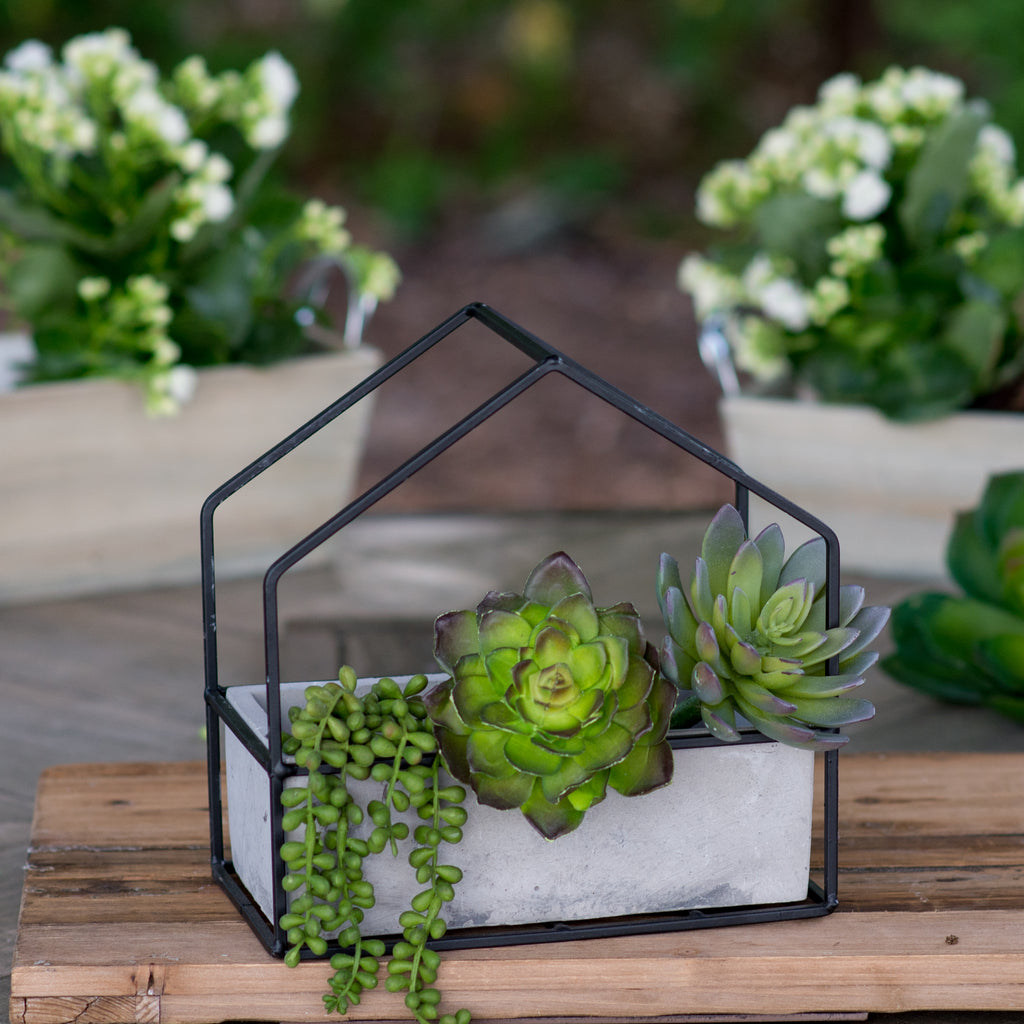 Rectangle Cement House Planter
