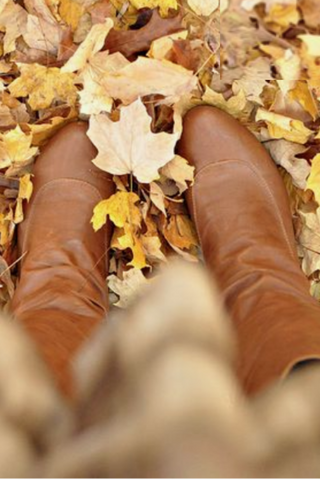Brown boots crunching fall leaves