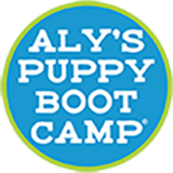 Aly's Puppy Bootcamp