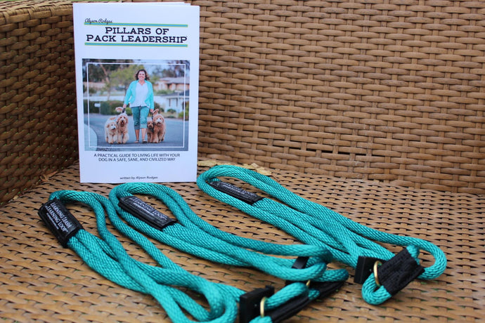 Learning Leash with Learning Loop® 3 Pack BUNDLE w/Book