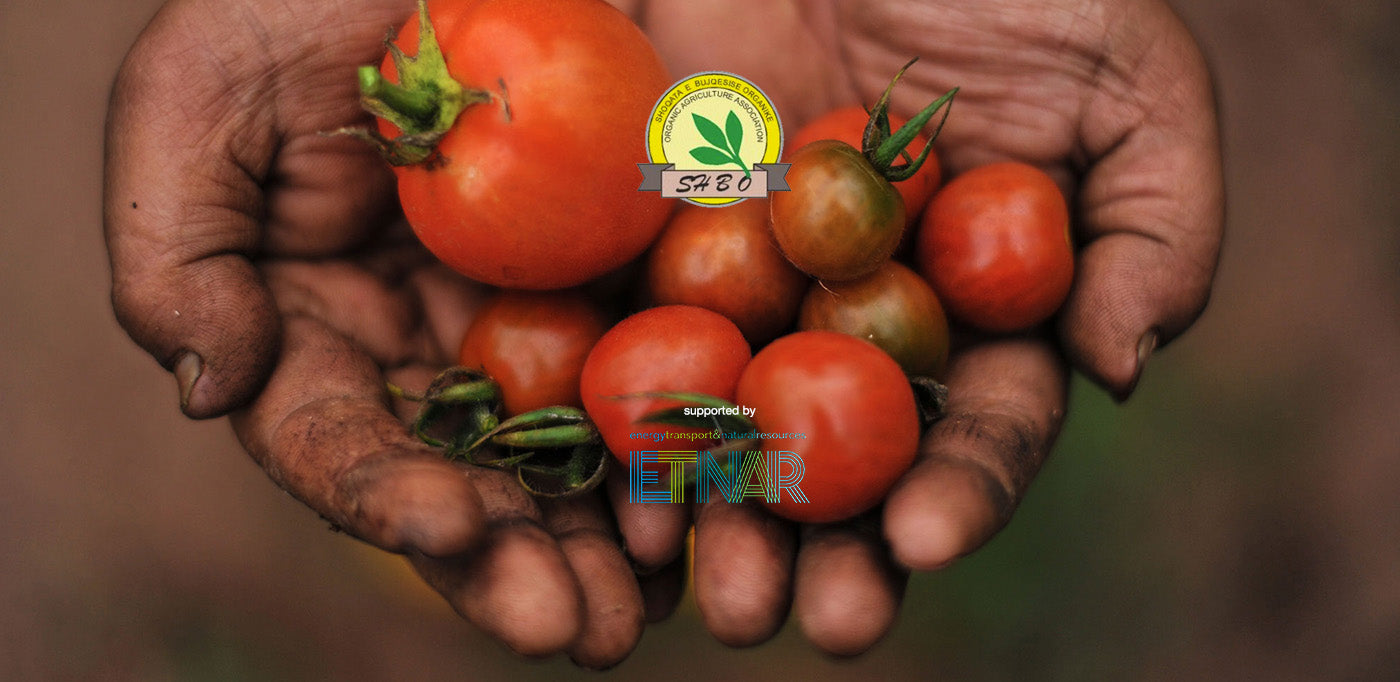 The Challenges of Organic Albania