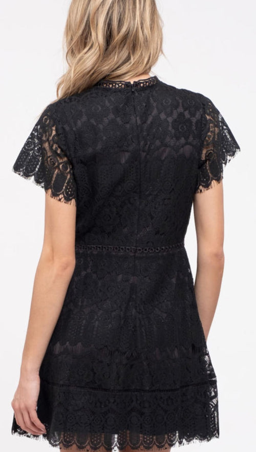 Live In Lace Black Dress