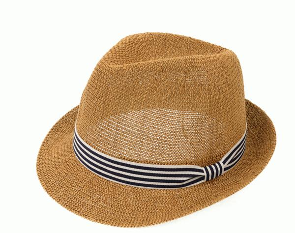 Navy & White Striped Fedora